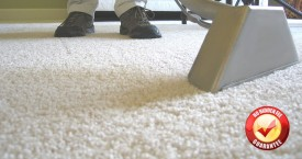 Best Carpet Cleaning in the Martinez area